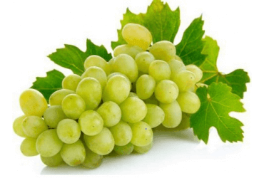 uva-bianca-senza semi